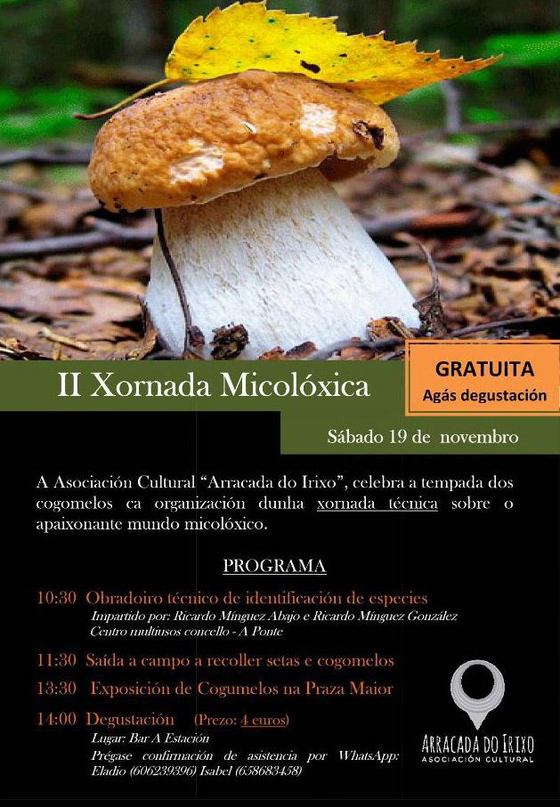 II Xornada Micolóxica este sábado no Irixo