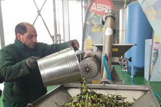 """Ourense acollerá en marzo unha ampla xornada sobre """"As bondades do consumo de aceite de oliva virxe"""""""
