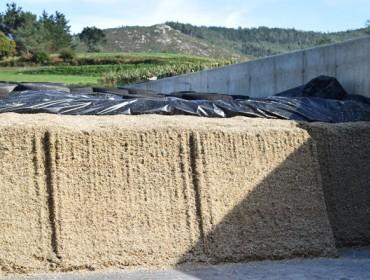 El CIAM patenta una sonda de toma de muestras en silos de maíz y de hierba
