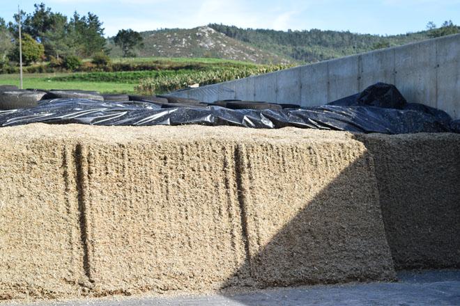 O CIAM patenta unha sonda de toma de mostras en silos de millo e de herba
