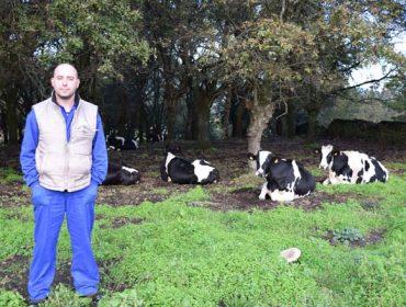 """""""Co pastoreo baixo os custos de alimentación a menos de 3 euros día por vaca"""""""