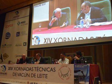 La falta de base territorial reduce la competitividad de las granjas de vacuno de leche gallegas