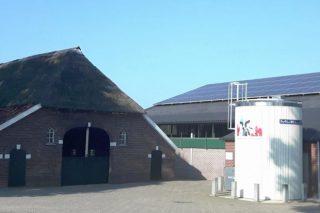 Así reduce unha granxa holandesa a súa pegada de carbono