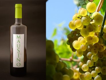 "Presentan ""Mausiño"", o primeiro viño elaborado a partir da variedade autóctona galega Ratiño"