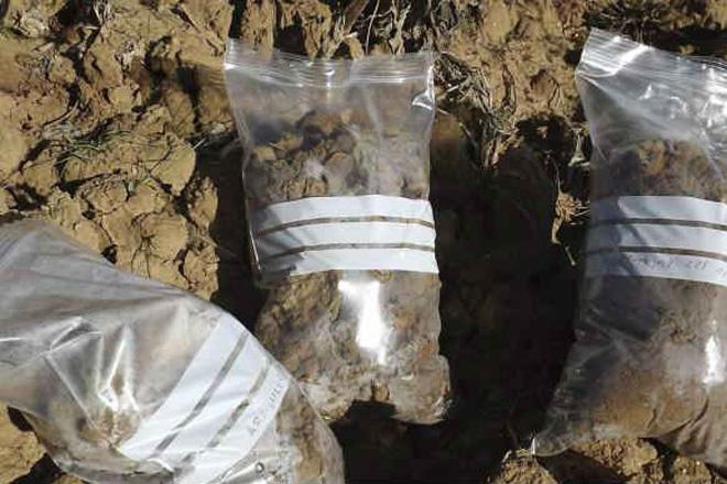 Consellos para seleccionar e recoller correctamente as mostras para análise do solo