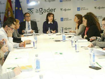 A Xunta publicará un decreto galego de primeiros compradores se o Ministerio non o fai este mes