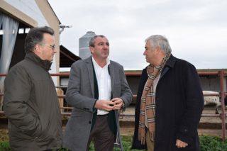 A Granxa Experimental de Vacún de Leite da Politécnica e de Veterinaria entrará en funcionamento en 2018