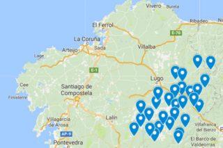 Lugo conforma unha fronte contra o decreto de prohibición do eucalipto