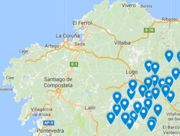 Lugo conforma un frente contra el decreto de prohibición del eucalipto