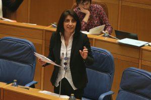 conselleira_parlamento_pataca