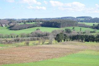 (II) La polarización en el uso de la tierra: intensificación en unas zonas y abandono en otras