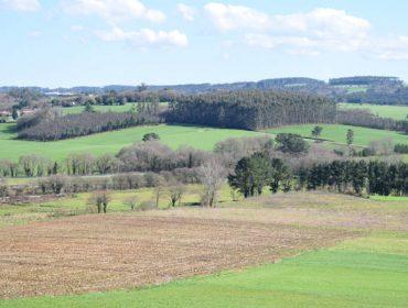(II) A polarización no uso da terra en Galicia: intensificación nunhas zonas e abandono noutras