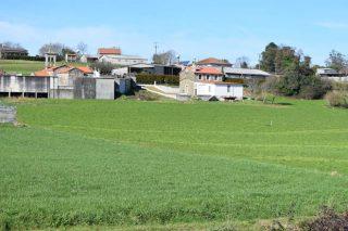 Convocadas las ayudas para crear en el rural empresas de actividades no agrícolas