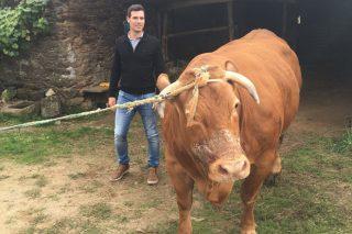 """""""Compramos en Galicia a Moura e Roxa, dúas vacas únicas, por 15.000 euros"""""""
