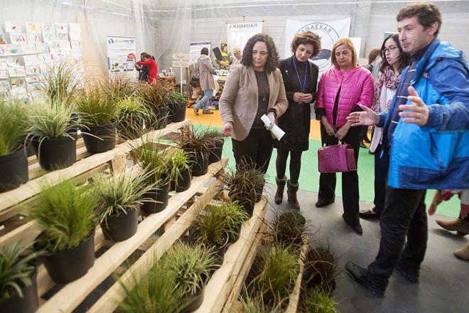 Belen do Campo, Sandra González, Carmela Silva e Patricia Rodríguez durante a súa visita