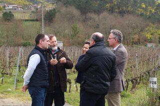 """A Evega organizará en xuño o """"I Encontro de Viticultura Galicia-Norte de Portugal"""""""