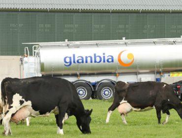 Irlanda incrementa case un 10% a súa produción de leite mentres que España estáncase