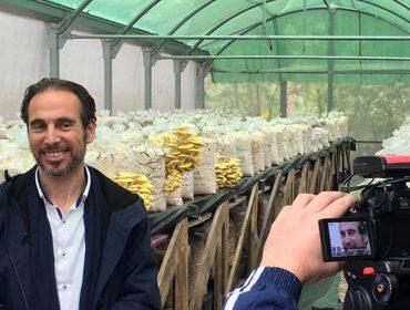 """""""O potencial dos bosques galegos para a produción de cogumelos é enorme e axudaría a recuperar o rural"""""""