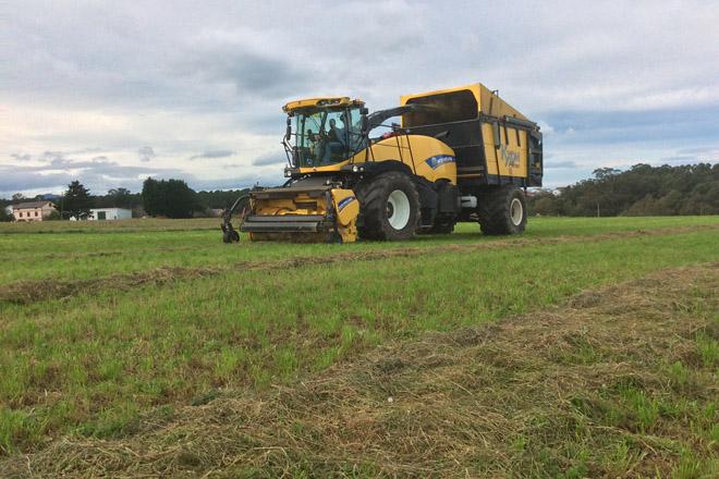 Campaña de ensilado de hierba 2018: menos cantidad y de menor calidad