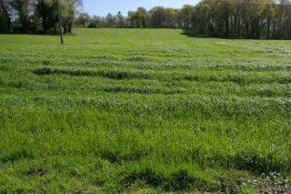 Prezos da terra rústica en Galicia por comarca