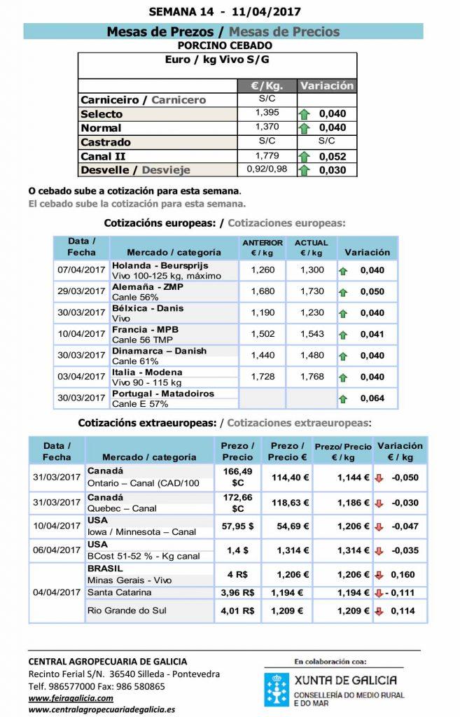 Silleda_porcino_11_4_17