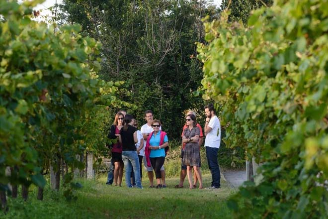 Fin de semana para disfrutar de las jornadas de puertas abiertas en las Rutas dos Viños de Galicia