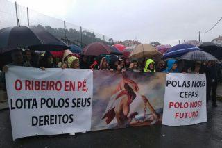Danos da xeada: Máis de 1.500 persoas esixen no Ribeiro axudas para os viticultores