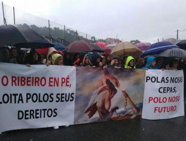 Daños de la helada: Más de 1.500 personas exigen en el Ribeiro ayudas para los viticultores