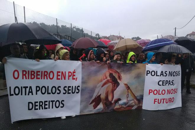 Os produtores afectados polas xeadas están convocados a unha gran mobilización este martes en Ourense