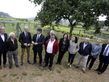 La bodega Terra de Asorei recibe el sello de Galicia Calidade