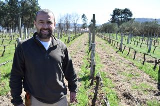 Unha adega galega entre as cinco mellores de España para a revista americana Wine Spectator
