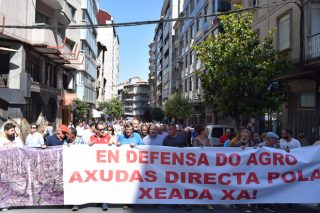 """Máis de 2.000 viticultores denuncian en Ourense o """"abandono"""" da Xunta ante os danos das xeadas"""