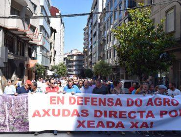 La Xunta aprueba ayudas de préstamos bonificados para los productores afectados por la helada y el granizo