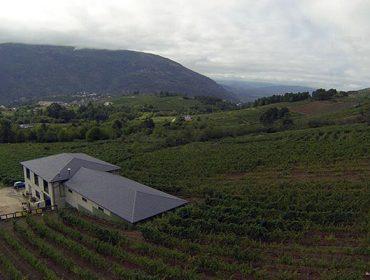 D'Berna, un século de tradición vitícola en Valdeorras