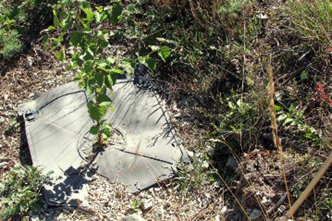 Innovacións contra a seca e a vexetación competidora en plantacións forestais