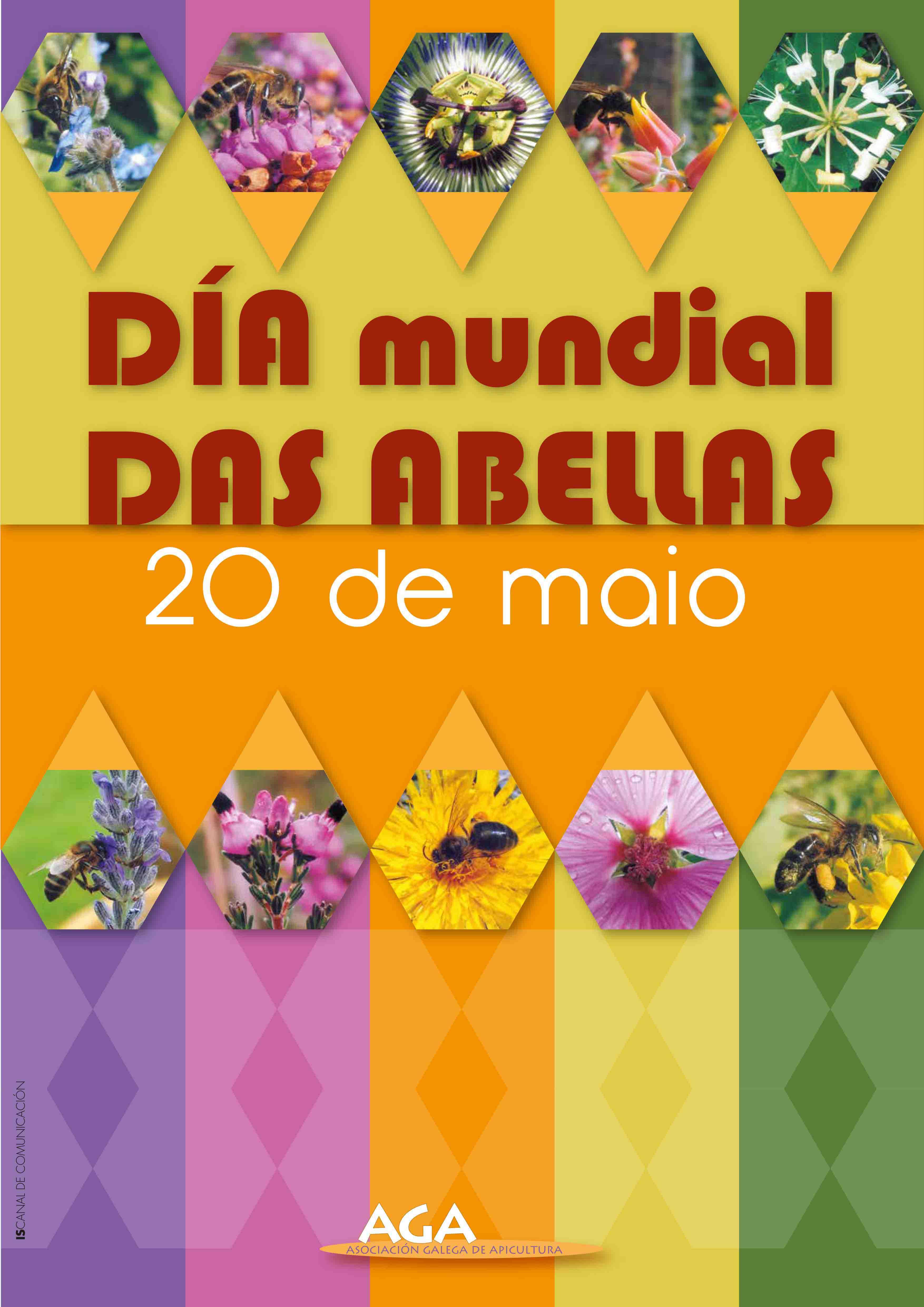 O Día Mundial das Abellas celebrarase este sábado por toda Galicia