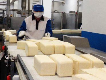 Cursos de elaboración de quesos y de derivados lácteos