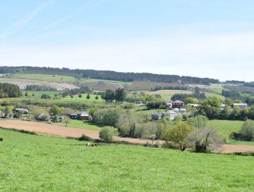 Coronavirus: A Comisión Europea acorda novas medidas de apoio aos agricultores e gandeiros