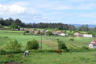 Demandas dos enxeñeiros agrarios á Consellería de Medio Rural