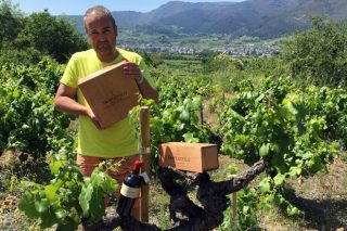 Adega Sampayolo: crowfunding para recuperar os viñedos centenarios de Valdeorras