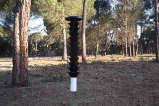 Cursos sobre nematodo do piñeiro e xestión de montes veciñais