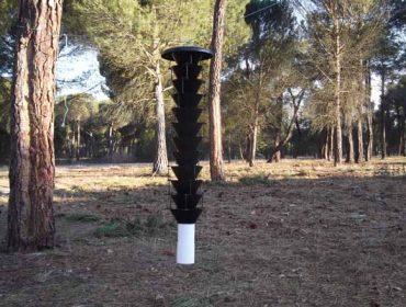 Cursos sobre nematodo del pino y gestión de montes vecinales