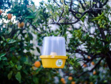 Nova regulación do uso de feromonas e bioestimulantes como medios de defensa fitosanitaria