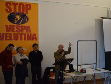 Apicultores galegos perfeccionan a arpa eléctrica como método eficaz para loitar contra a Avispa Asiática