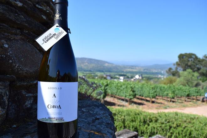 15 medallas de ouro para os viños galegos no concurso internacional Mundus Vini