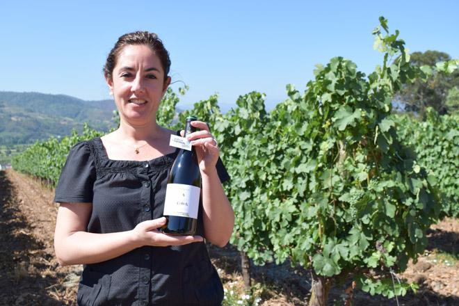 """""""Os premios ao noso Godello confirman que a calidade é o futuro para os viños de Valdeorras"""""""