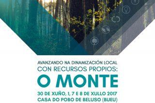 Curso sobre alternativas para o monte a partir dos recursos locais