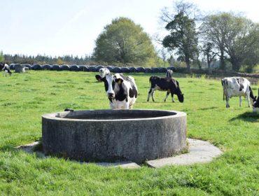 Listado de beneficiarios das axudas para o subministro de auga ás ganderías