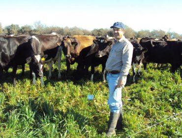 """""""Os cruces triples e o retrocruce con Holstein son os máis produtivos en pastoreo"""""""