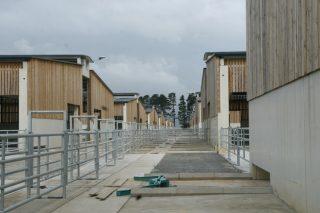 O Centro de Recría da Deputación de Lugo abre finalmente o 5 de xuño coa entrada das primeiras 50 xovencas de gandeiros lucenses